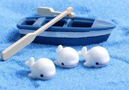 terrarium supplies singapore Blue Boat Set (Without whales) October 2021