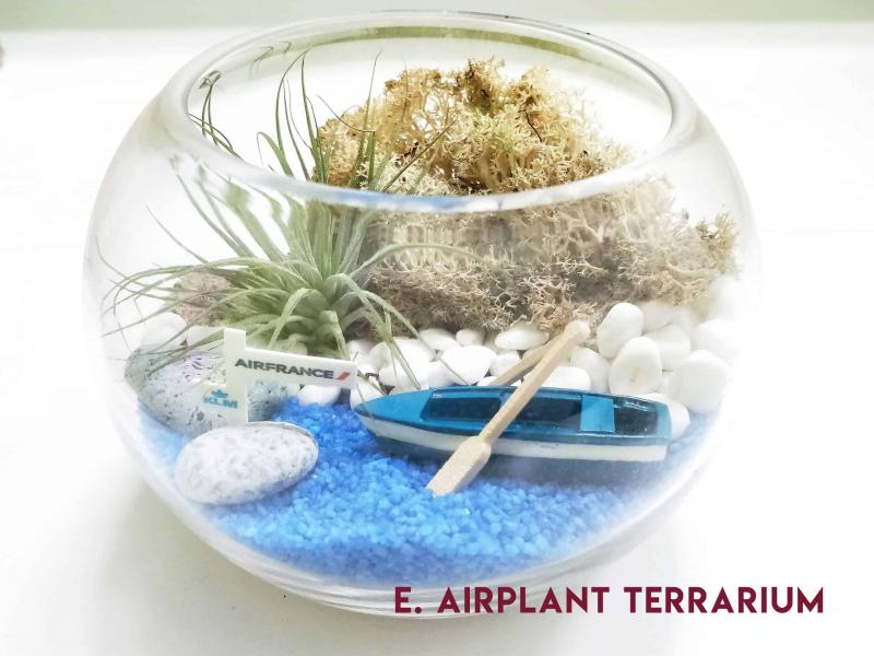 terrarium workshop Terrarium Workshop - 29 Feb 2020, 1pm September 2021