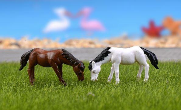 terrarium figurines singapore Horse October 2021