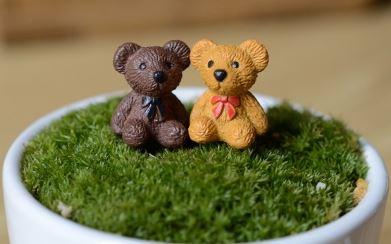 terrarium figurines singapore Teddy Bears October 2021